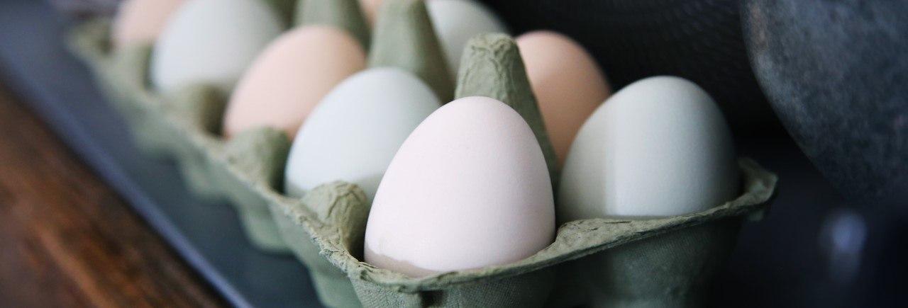 Äggkokare bäst i test 2020 - Hitta den bästa äggkokaren